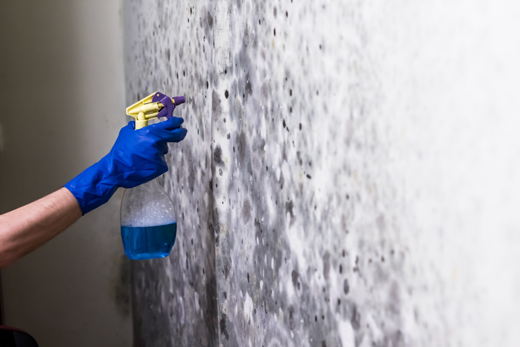 person cleaning a wall